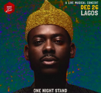 One night stand with Adekunle Gold, concert