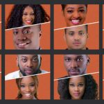 BBNaija housemates, how to vote