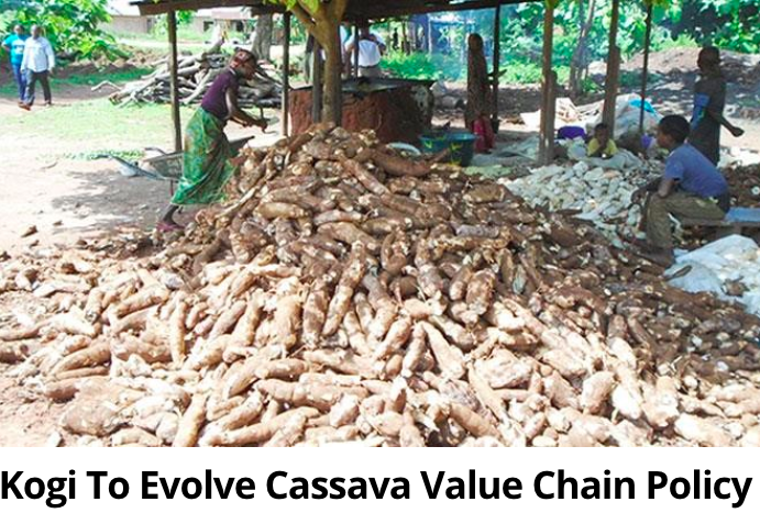 Cassava value chain