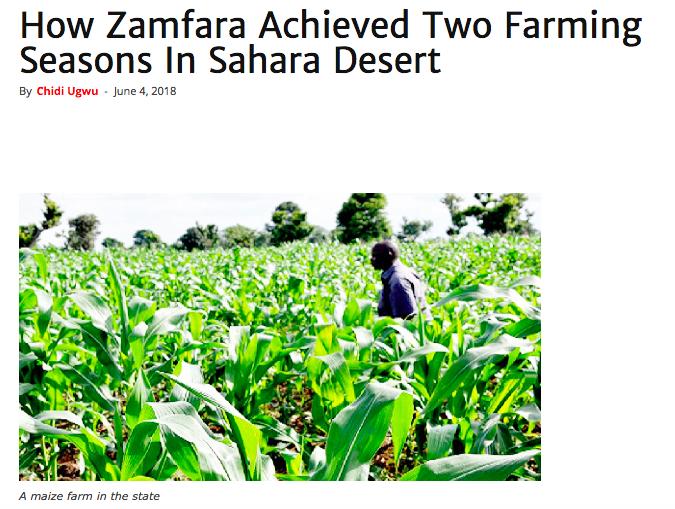 Zamfara Desert Farming